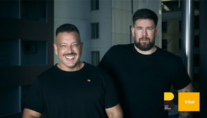 ddb group's tribal appointment of cso